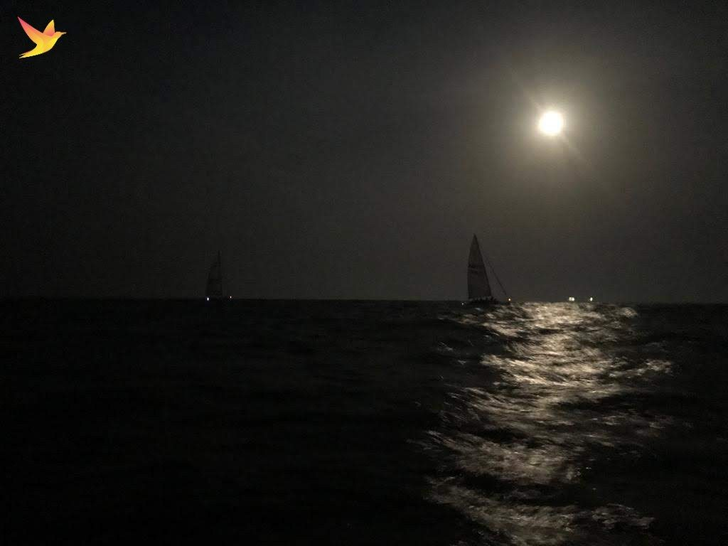 Silver treat from full moon while Sailing