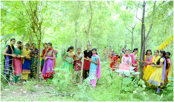 Piplantri - Tree for every girl child